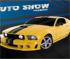 Auto Show Parking
